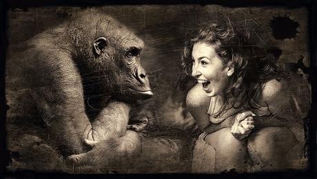 אשה וקוף - עותק