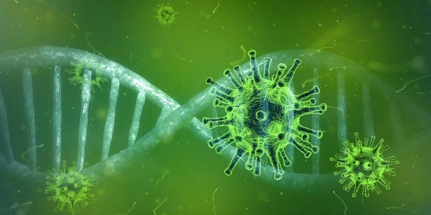 הדמיה של וירוס הקורונה - COVID-19