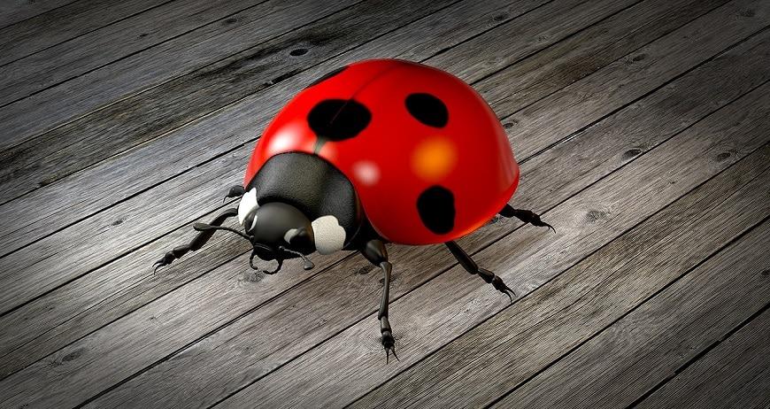 חיפושית מצויירת באנימציה