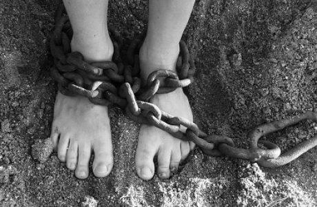 יציאה מעבדות לחירות בעזרת תוכן איכותי